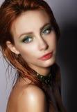glam 被提炼的年轻赤褐色妇女 首肩画象 库存照片
