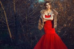 Glam model with updo hair and beautiful make up wearing posh red fishtail dress and luxurious mink vest standing in dry bushes Stock Photo