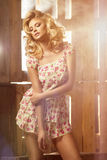 Glamorös curvy blond kvinna Arkivfoton