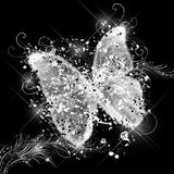 glamorös fjäril Arkivbild