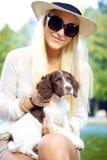glamorös husmor för alert hund Royaltyfri Foto