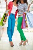 Glamorösa shoppare Royaltyfri Bild