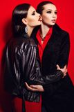 Glamor closeup portrait of  two beautiful sexy stylish brunettes Caucasian young women models in black jacket with bright makeup, Royalty Free Stock Image