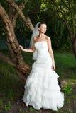 Glamorous bride Stock Images