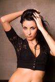 Glamorous brunette. Stock Images