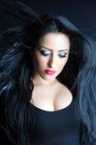 Glamorous Brunette Woman Stock Images