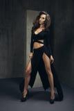 Glamorous curvy brunettewoman Royalty Free Stock Images