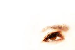 Glamorous Eye. On white background Royalty Free Stock Photography