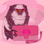 Glamorous fashion marmoset with pink satchel. Glamorous fashion marmoset in stylish glasses with pink satchel Stock Photos