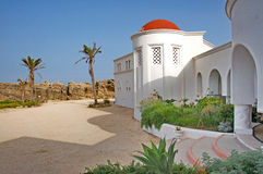 Glamorous ground yard with palm trees of a Mediterranean villa royalty free stock photography