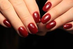 glamorous manicure nails royalty free stock photo