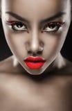 Glamorous portrait Stock Images