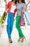 Glamorous shoppers Royalty Free Stock Image