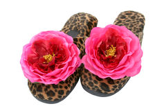 Glamorous Slippers 1 Stock Photo