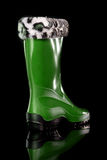 Glamorous women's boots. Stock Images