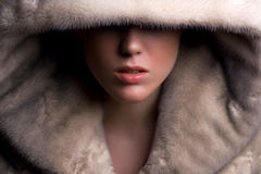 Glamorous young woman. Covered face with fur Royalty Free Stock Image