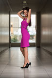 Glamorous Young Woman In Elegant Style Dress Royalty Free Stock Photos