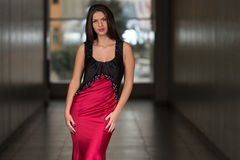 Glamorous Young Woman In Elegant Style Dress Stock Photography