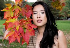 Glamorous young woman poses by colorful autumn leaves. Glamorous long haired beautiful woman poses with a branch of colorful red, orange and yellow maple leaves stock photography