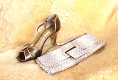 Glamour accessories. Shoe and bag on fur Royalty Free Stock Images