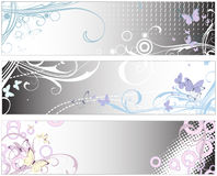 Glamour banner_4 Royalty Free Stock Images
