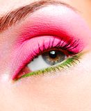 Glamour eye Royalty Free Stock Image