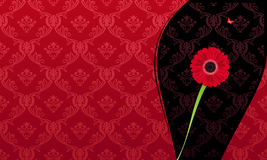 Glamour fashion invitation card flower Stock Images
