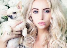 Glamour girl with chihuahua Royalty Free Stock Photos
