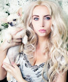 Glamour girl with chihuahua Stock Image