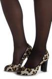 glamour legs woman στοκ εικόνα