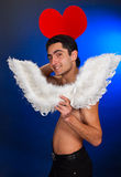 Glamour man with white wings. Royalty Free Stock Images