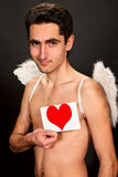 Glamour man with white wings. Portrait of glamour man with white wings and heart Royalty Free Stock Images