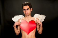 Glamour man with wings and red heart. Portrait of glamour man with white wings and red heart Stock Photos