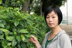 Mature Asian woman Stock Photo