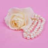 Glamour pearl beads and the white rose Royalty Free Stock Photography