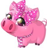 Glamour pig Stock Photo