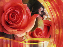 Glamour roses card Royalty Free Stock Image