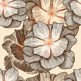 Glamour seamless wallpaper with wild roses, hand-d. Rawing. Vector illustration. Eps10 Royalty Free Stock Image