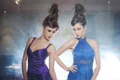 Glamour twins Stock Photography