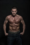 Glamour young muscular athletic man Royalty Free Stock Photography