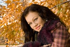 Glamour young woman smiles Royalty Free Stock Image