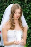 Glamourous bride Stock Photo
