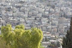 Glance at Jerusalem Royalty Free Stock Image