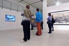 Glans av Uncarved jade Utställning i Moskva Arkivbilder