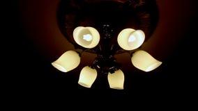 Glans van close-up de Macro Zes Lampen op Donker Plafond stock video