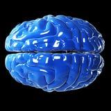 Glansig blå hjärna Royaltyfria Foton
