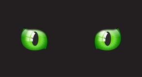 Glansiga ögon för katt på svart bakgrund Royaltyfria Bilder