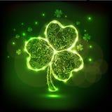 Glansiga härliga treklövertjänstledigheter för Sts Patrick dag Royaltyfri Foto