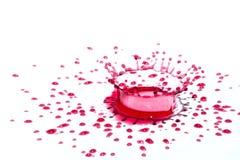 Glansiga röda vätskesmå droppar (plaskar) som isoleras på vit Arkivfoton