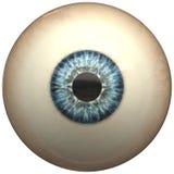 glansigt blått öga för boll Arkivbild